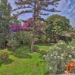 Vue jardin – 9479890